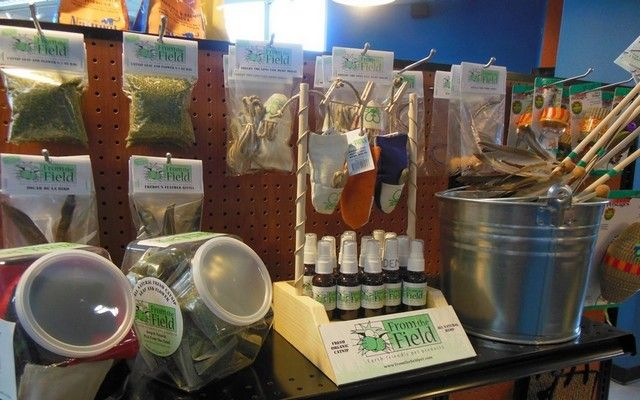 Earth Friendly Pet Product Line Inspired by Hemp