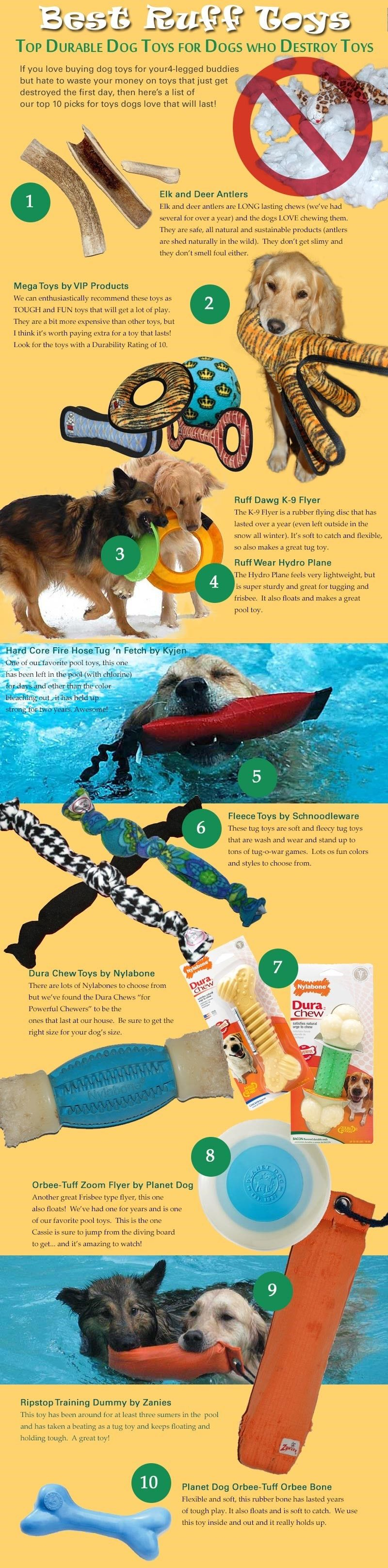 Dog toys infographic