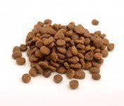 Loose Kibble puppy food on a white background