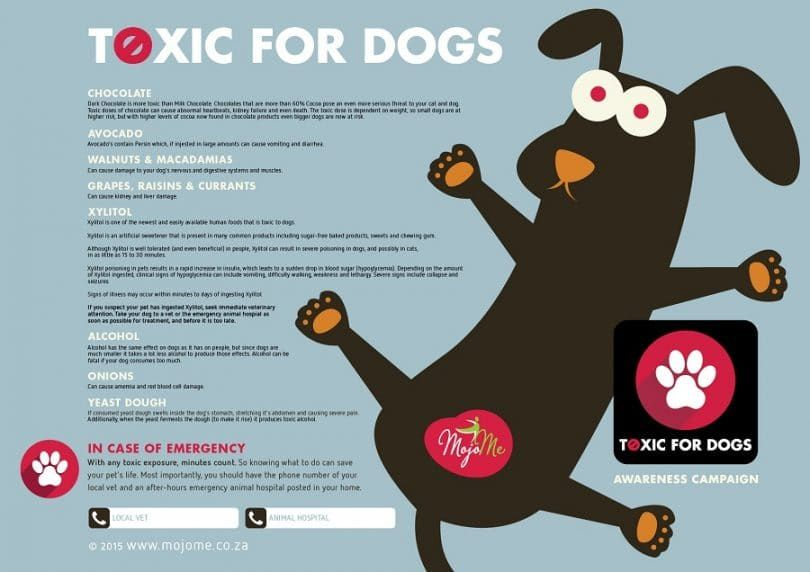 Toxic for dogs