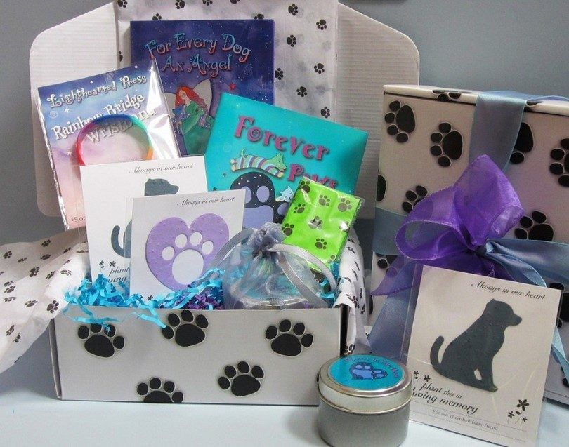Gift ideas for dog lovers: creative ways to make a dog owner happy