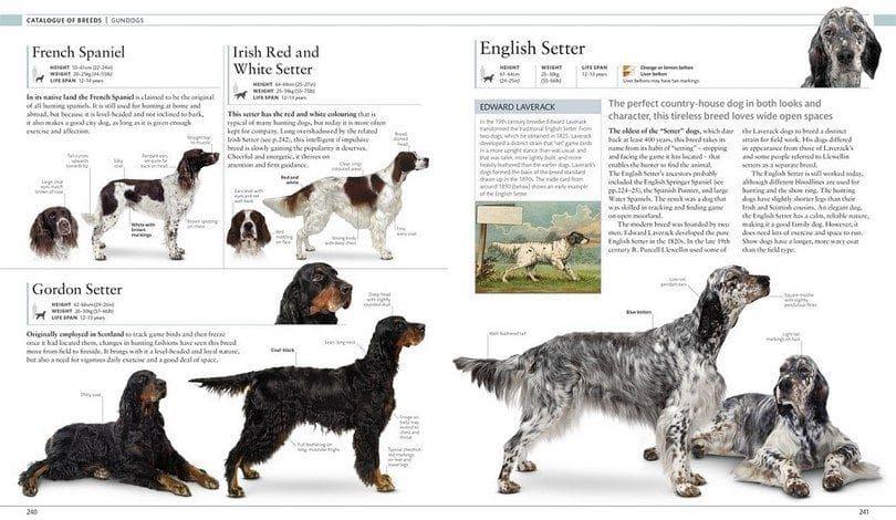 The dog encyclopedia by DK Publishing