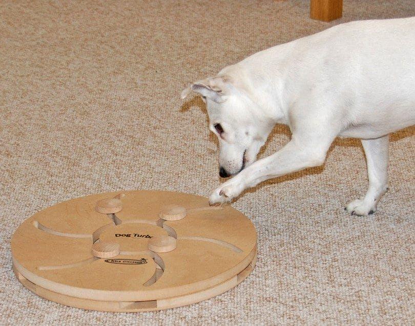 Nina Ottosson wooden dog