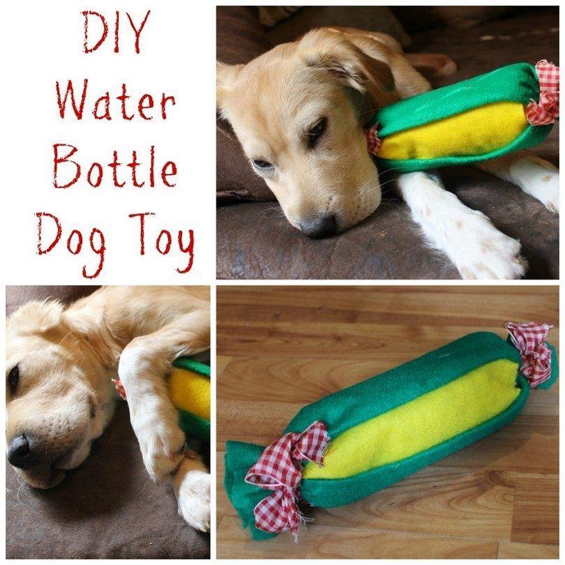 Homemade eco dog toy