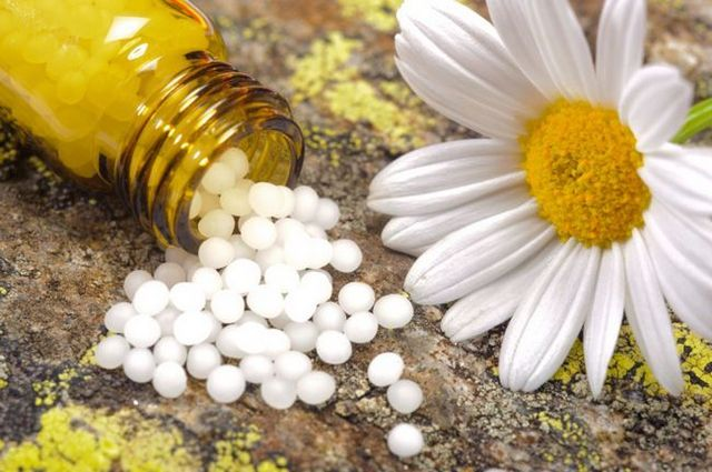 Homeopathic remedies & flower essences for your dog's physical and emotional well-being