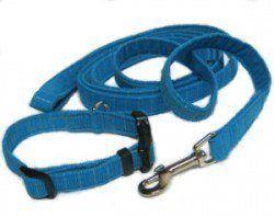 A blue nylon dog leash and collar