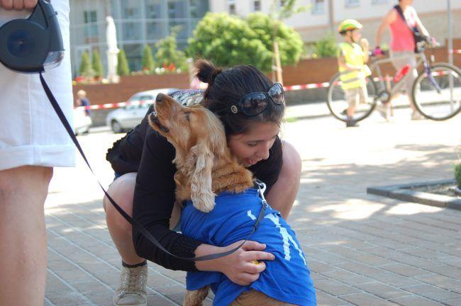 dog-426100_1280