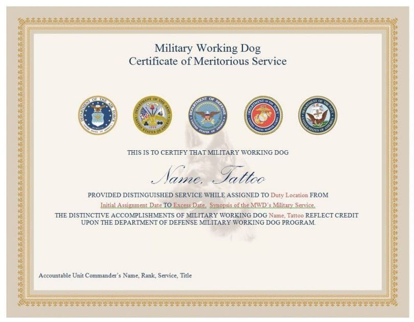 Military dog certificate