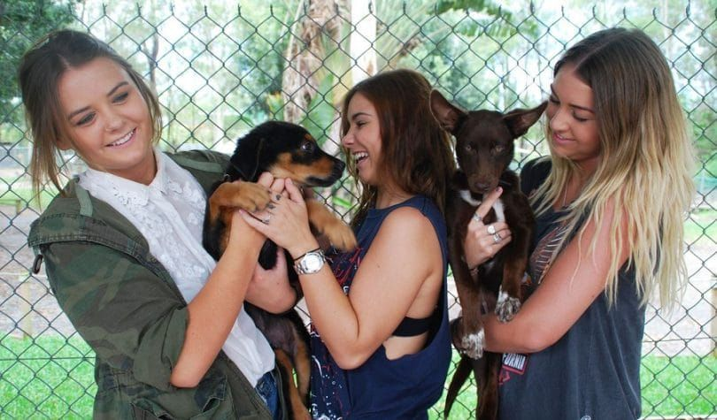 Dog adoption process girls wanting a puppy