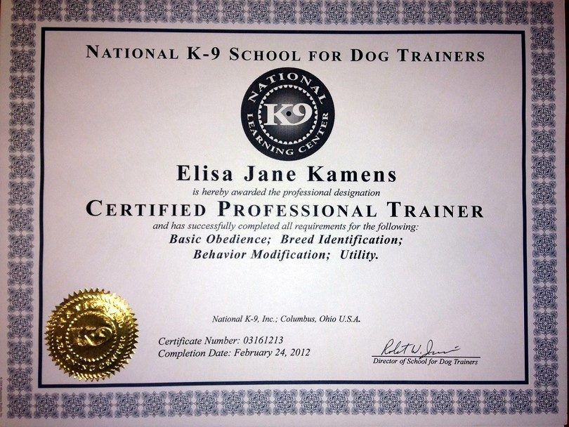 Certification of dog trainer