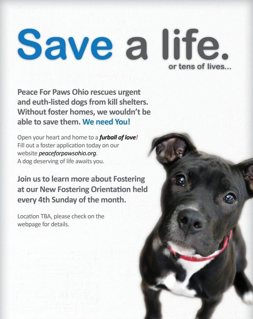 Save a life