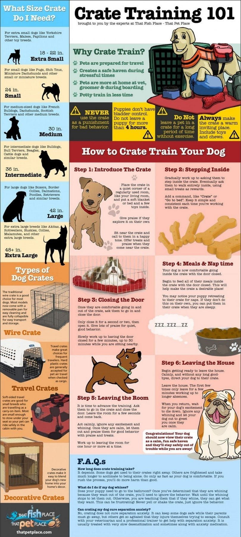 Crate training infographic
