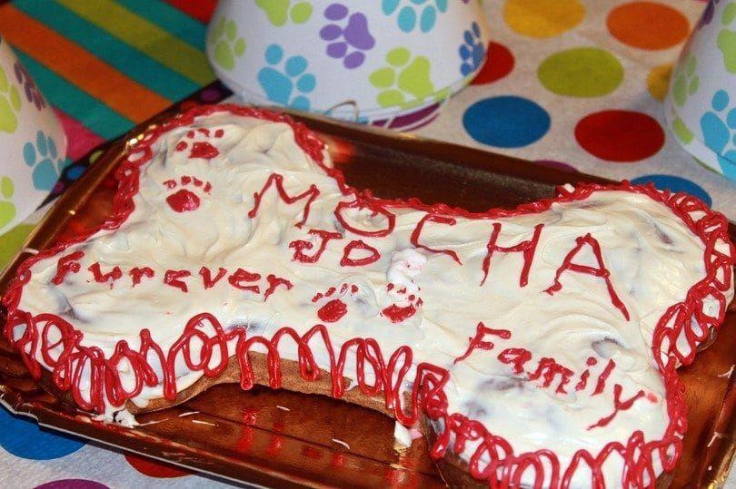 Anniversary of adoption dog cake