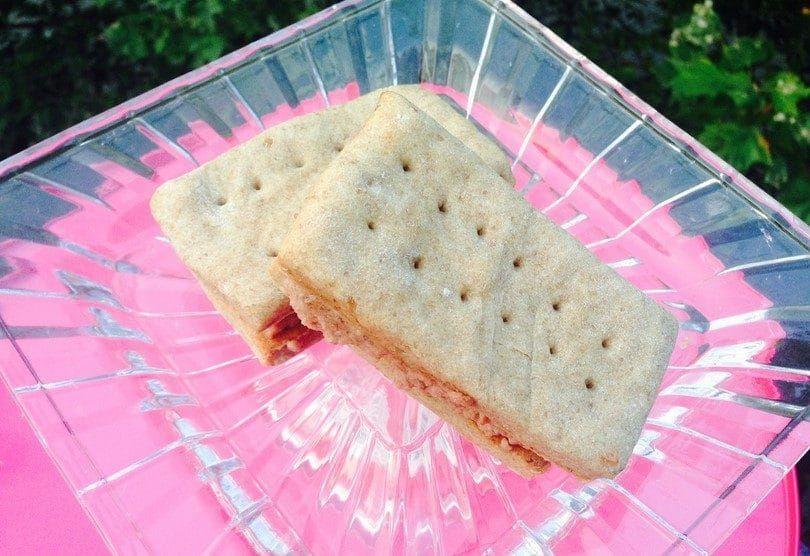 Sandwich cakes dog