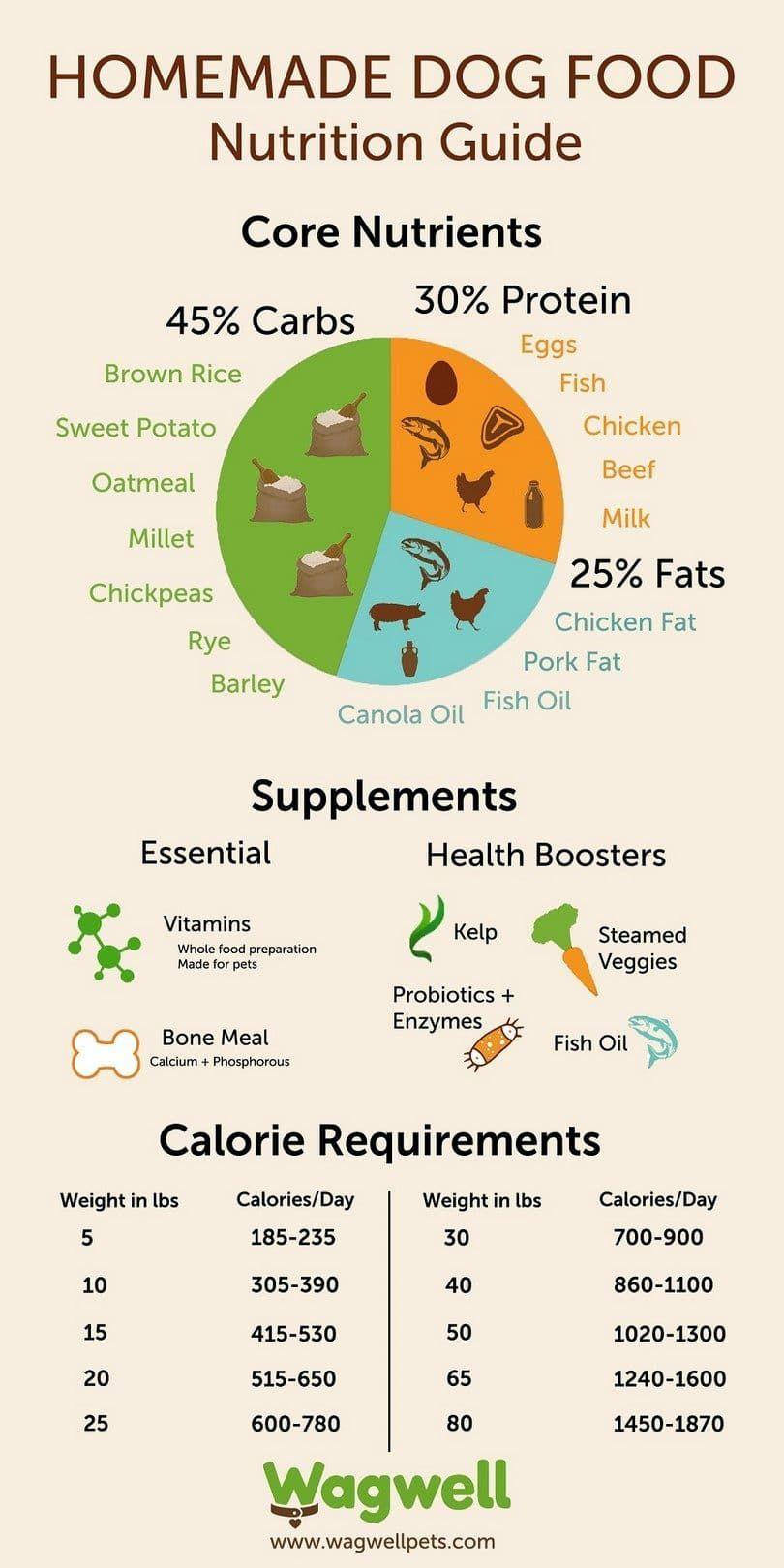 Homemade nutrition guide