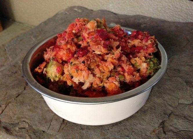 Dog food homemade