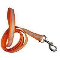 A reflective dog leash