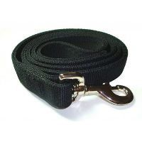A nylon dog leash