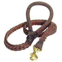 A leather dog leash
