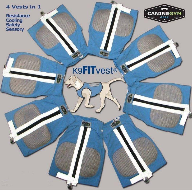 K9FITvest-blue