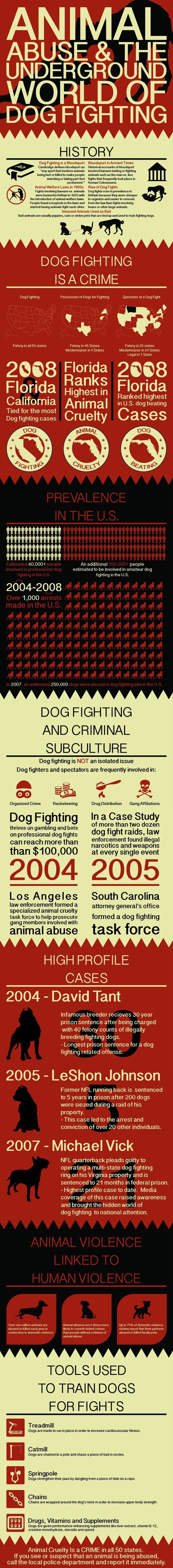 Animal abuse infographic
