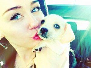 Miley cyrus adopts again!