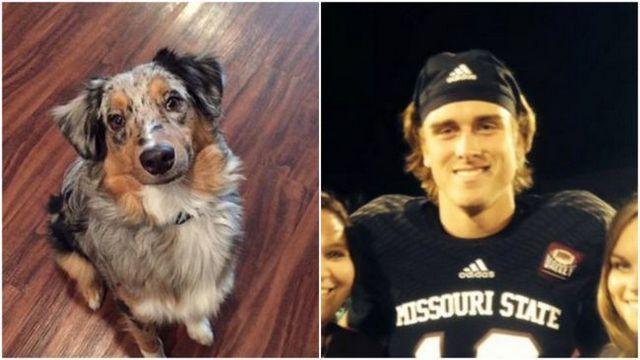Missouri state quarterback suspended over allegations of horrific dog abuse