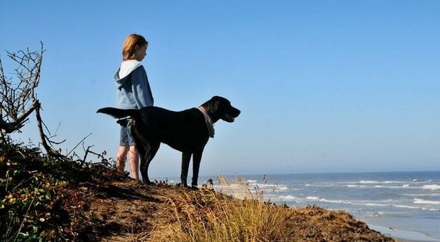 New evidence that dogs help prevent asthma