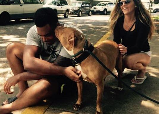 Nfl player walks into shelter, asks for the most 'not-so-adoptable' dog