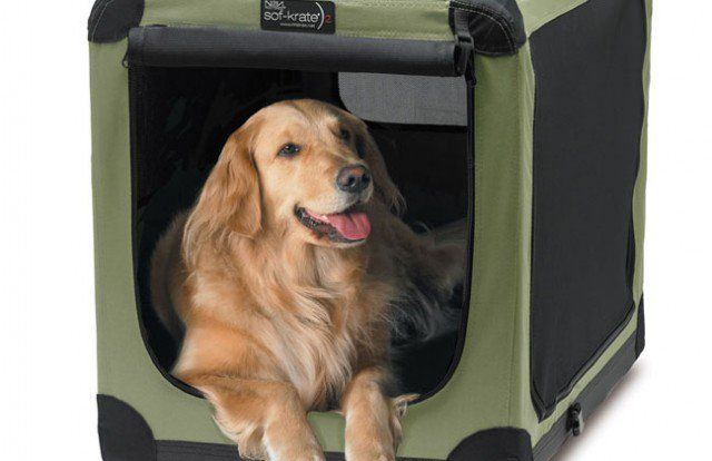 Noz2noz dog crates: sof-krate n2 pet home review