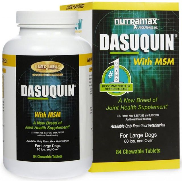 Nutramax dasuquin with msm for large dogs review