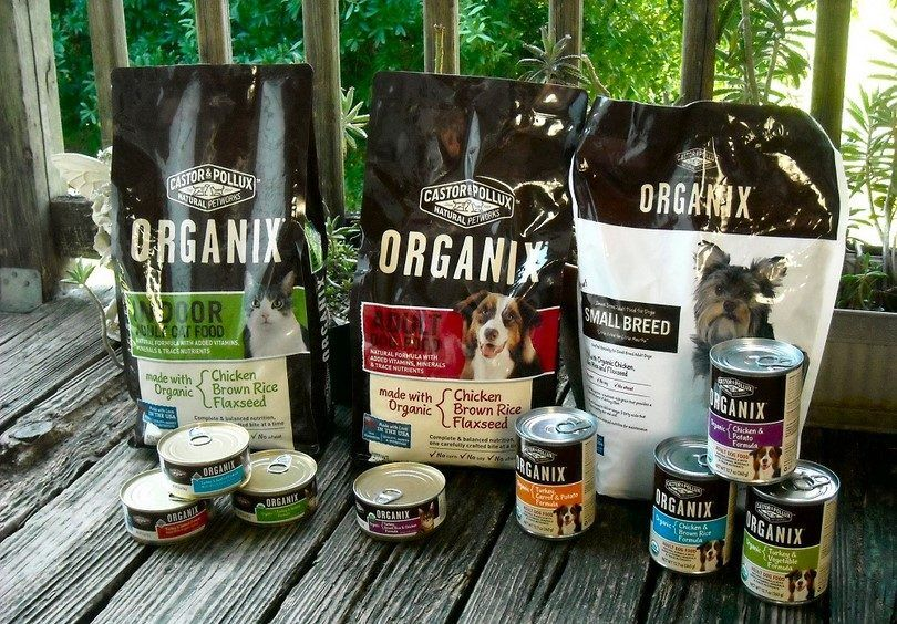 Organic food for dogs