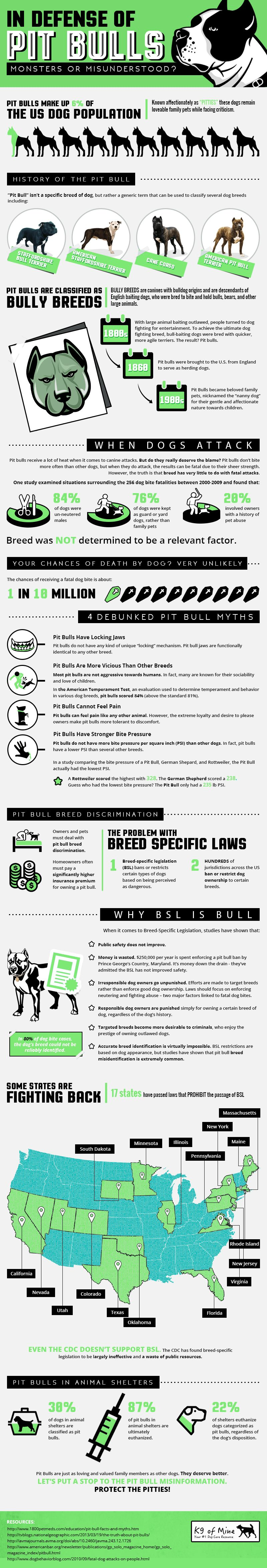 Pit bull infographic: the truth about pit bulls