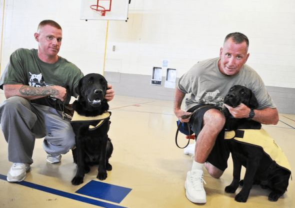Prison inmates find new purpose as service dog trainers
