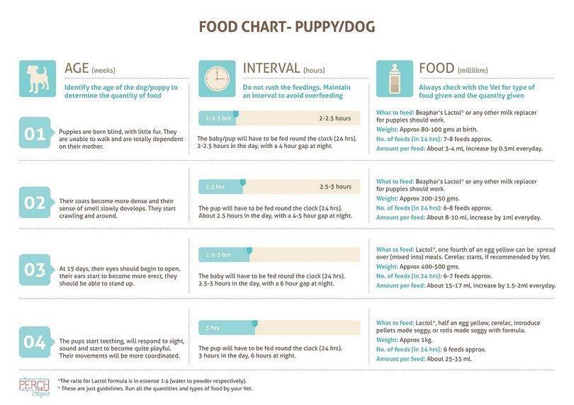 Puppy food chart