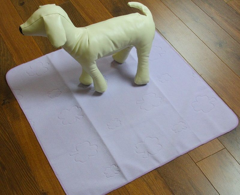 Puppy training pads: a beginner's guide on how to the best products to housetrain your puppy