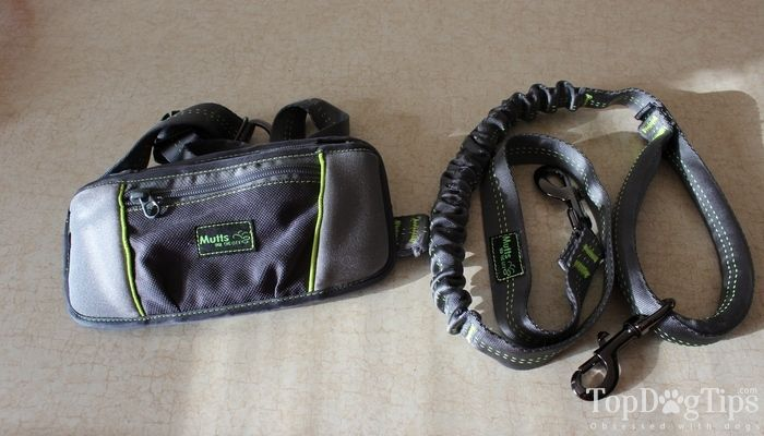 Review: mutts and the city hands free dog leash system