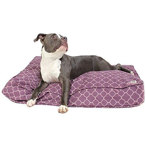 Review: the molly mutt dog bed