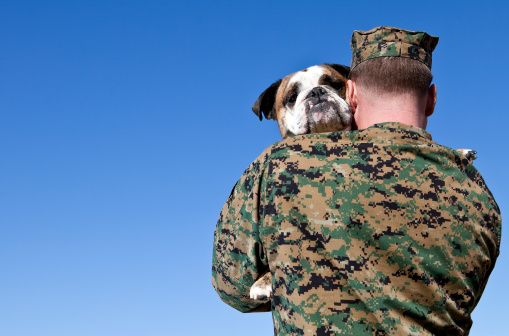 Support our troops – by boarding their dogs!