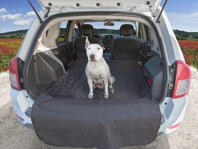 The best dog car seat: top 5 products to improve fido's car ride