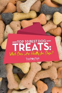 Top 10 - What Are the Best Dog Treats