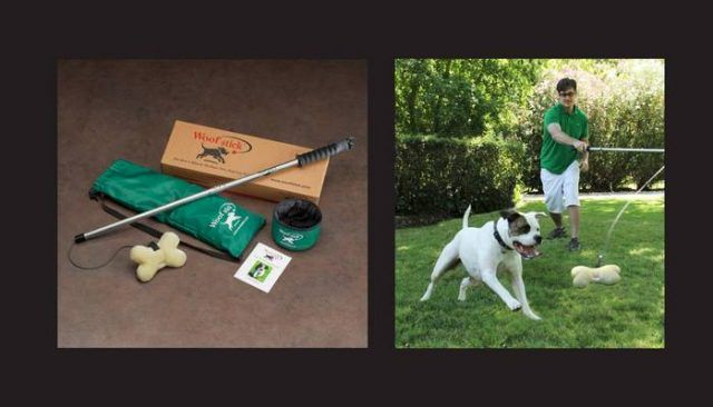 The woofstick isn't your average dog toy