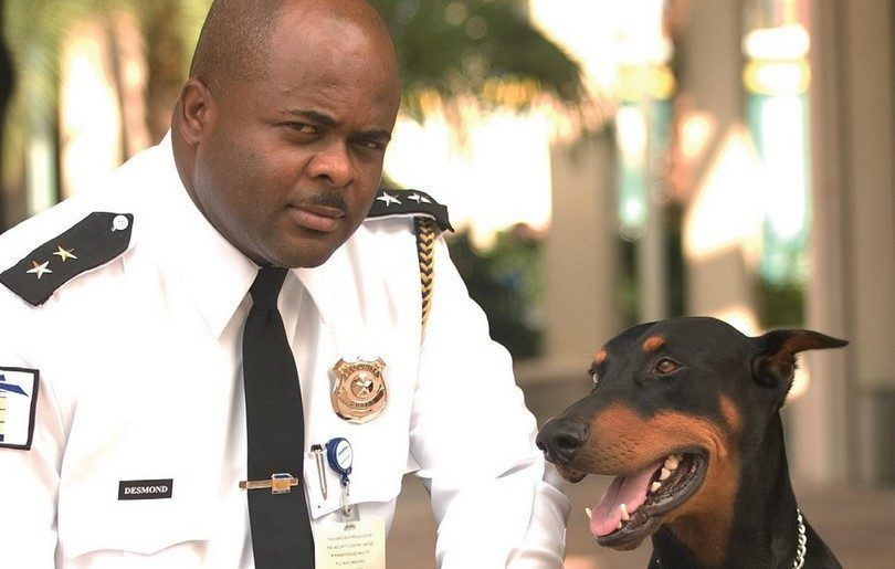 Top 10 best guard dogs: breeds to keep close in case of danger