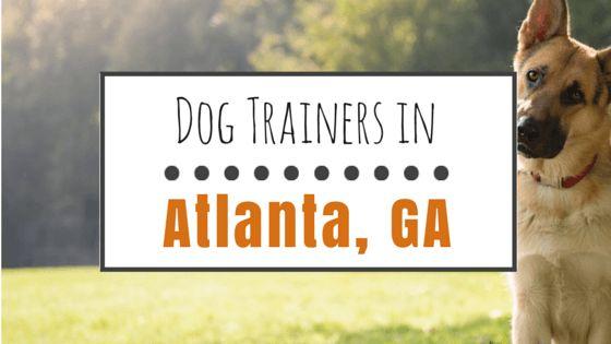 Top 10 dog trainers in atlanta, georgia