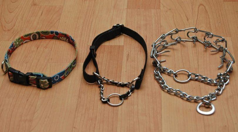 Dog show collars