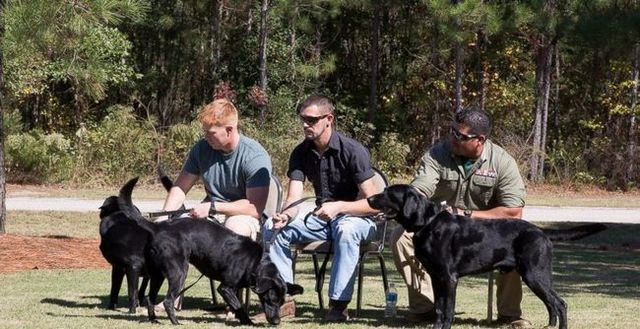 War dogs and marines reunited