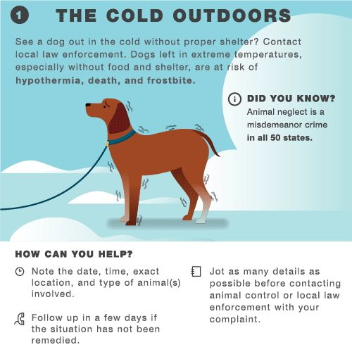 Watch this! Battling the winter woes? This animated infographic will help!