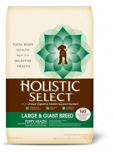 holistic select large breed puppy feed
