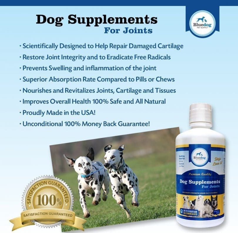 Dog Supplements for Joints Premium Quality MAXIMUM STRENGTH