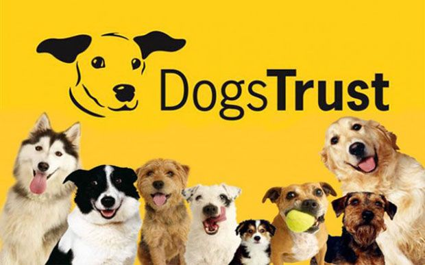What is Dogs Trust UK